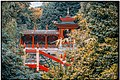 """ The Chinese Garden"" (50247371027).jpg"