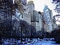 (2005) Central Park South.jpg