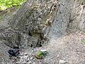 Überkippte Schichten der Jena-Formation.jpg