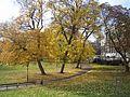 Јесен у Бечу - Hofburg.JPG