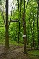 Два водних джерела, Голосіївський район Ур. «Феофанія» 08.jpg