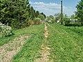 Дорога в СНТ 3.jpg