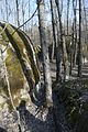 Камінне село, березень 1.jpg