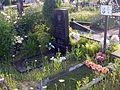 Кладовище у Вишневому - panoramio (2).jpg