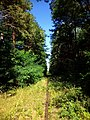 Коли йдеш по шпалам - ніколи не заблукаєш - panoramio.jpg