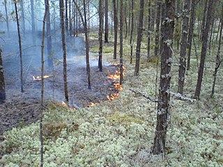 nature reserve in the Khanty-Mansi Autonomous Okrug, Russia
