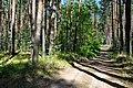 Национальный парк Нижняя Кама Урочище Красная горка (3).jpg