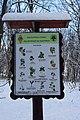 Національний природний парк «Голосіївський» DSC 0203.jpg