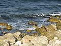 На березі моря.jpg