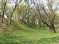 Парк - panoramio (7).jpg