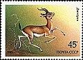 Почтовая марка СССР № 5662. 1985. Животные Красной книги СССР.jpg