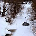 Река Барда - panoramio (1).jpg