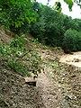 Сель в Тызылском ущеле - panoramio.jpg