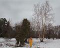 Сергиевка 2008 01 10.jpg