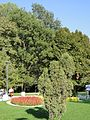 "София ""Южният Парк"" 07 October 2012 - panoramio (38).jpg"