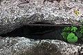Сходи лісопарку (Тонкочеєва) Під сходами IMG 9568.jpg
