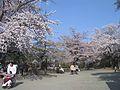 水沢公園.JPG