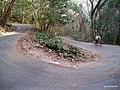 県道12号線 - panoramio (3).jpg