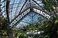 花の文化園 大温室 Inside of the greenhouse, Osaka Prefectural Flowers Garden 2014.4.01 - panoramio.jpg