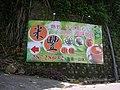 行義路至陽明山健步走 - panoramio - Tianmu peter (67).jpg