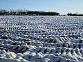-2021-01-15 Frozen ploughed field, Low Hagg Farm, Kirbymoorside.jpg