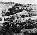 027 1941 - Gardens outside city of Jerusalem, Palestine (by Dvr Tom Beazley) 01.jpg