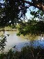 07976jfPampanga River banks Candelaria Boats Fish Delta Bulacan Roadsfvf 06.JPG