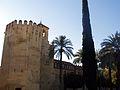 10502 Cordoba The Alcazar Wall (11967106024).jpg