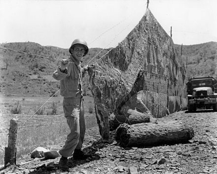 A soldier of the 120th Engineer Battalion, 45th Infantry Division sets up camouflage net near the front lines in Korea in 1952. - 45th Infantry Division (United States)