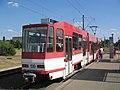 139z Nowy Chmjelow.JPG