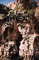 146Zypern Nea Paphos Königsgräber (14087398661).jpg