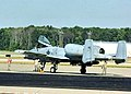 163d Fighter Squadron - A-10 Thunderbolt II.jpg