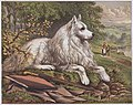 1875-esquimaux-dogs 04.jpg