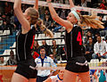 20130330 - Vannes Volley-Ball - Terville Florange Olympique Club - 075.jpg