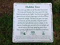 "2014-08-27 17 03 15 Sign describing the ""Hobbit Tree"" along the Stony Brook Trail in the Stony Brook-Millstone Watershed Association, New Jersey.JPG"