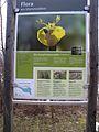 20150219 119 Wienerwaldsee (Large) (16394480608).jpg