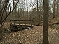 2016-03-10 14 36 23 View south along the Creek Trail crossing over a tributary of Big Rocky Run within Ellanor C. Lawrence Park in Fairfax County, Virginia.jpg
