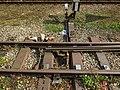 2017-09-21 (161) Railway point at Bahnhof Waidhofen an der Ybbs.jpg