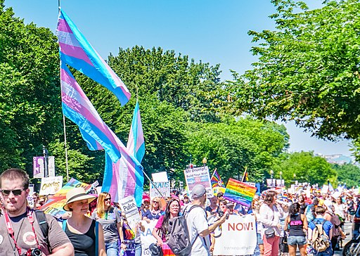 2017.06.11 Equality March 2017, Washington, DC USA 6612 (35271915015)
