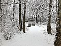 2018-03-21 12 14 51 View along a snow-covered walking path as it crosses a bridge in the Franklin Glen section of Chantilly, Fairfax County, Virginia.jpg
