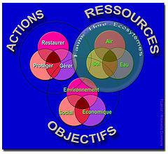 Image Result For Agenda De Bureau