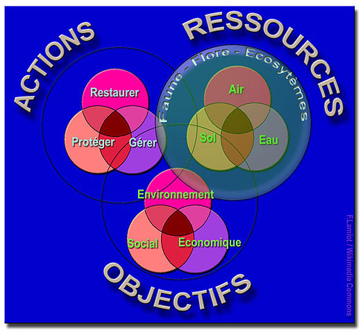 Diagramme de venn sous r edgrafik diagramme de venn sous r fichier3x3 rondslamiotwikimediacommonsg u2014 wikipdiachart ccuart Images