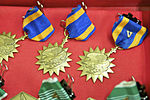 82nd Combat Aviation Brigade pilots earn air medals DVIDS569845.jpg