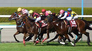 Centaur Stakes