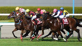 Centaur Stakes - The 25th (2011) Centaur Stakes