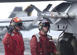 AIM-9 Sidewinder on F-14.jpeg