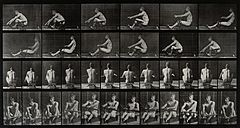 A man rowing. Photogravure after Eadweard Muybridge, 1887. Wellcome V0048675.jpg