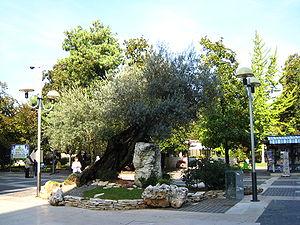 Italiano: Zona pedonale di Abano Terme - Ottob...