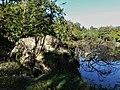 Abjat-sur-Bandiat étang Échasserie arbre mort.jpg