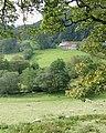 Across Cwm Cnyffiad, Powys - geograph.org.uk - 1498156.jpg
